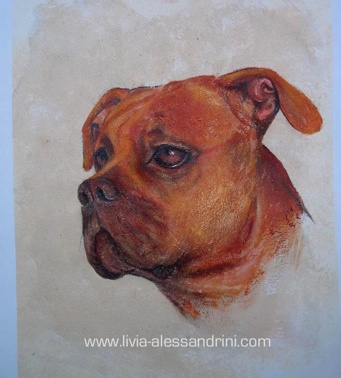 Livia Alessandrini - FREESCO